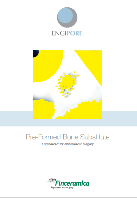 engipore-brochure-cover.png